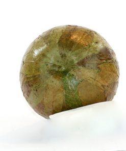 Skulptur päron papier maché av lovtrads-blad undersida